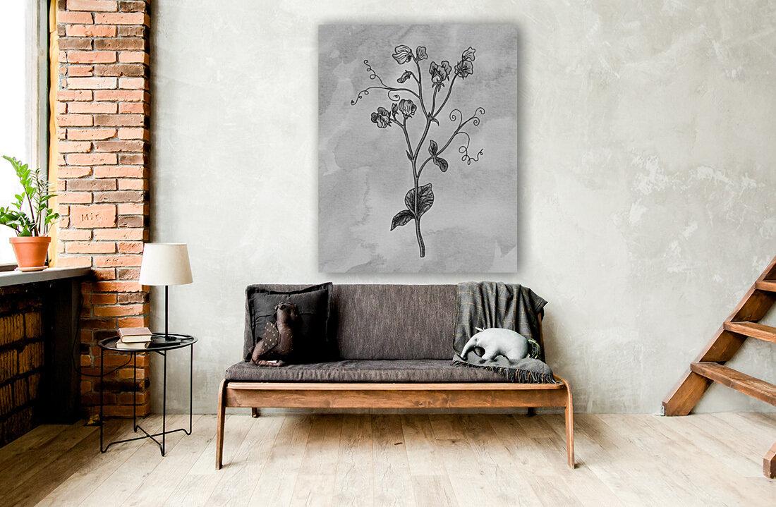 Sweet Pea Simple Gray Botanical Flower On Watercolor Marble   Art