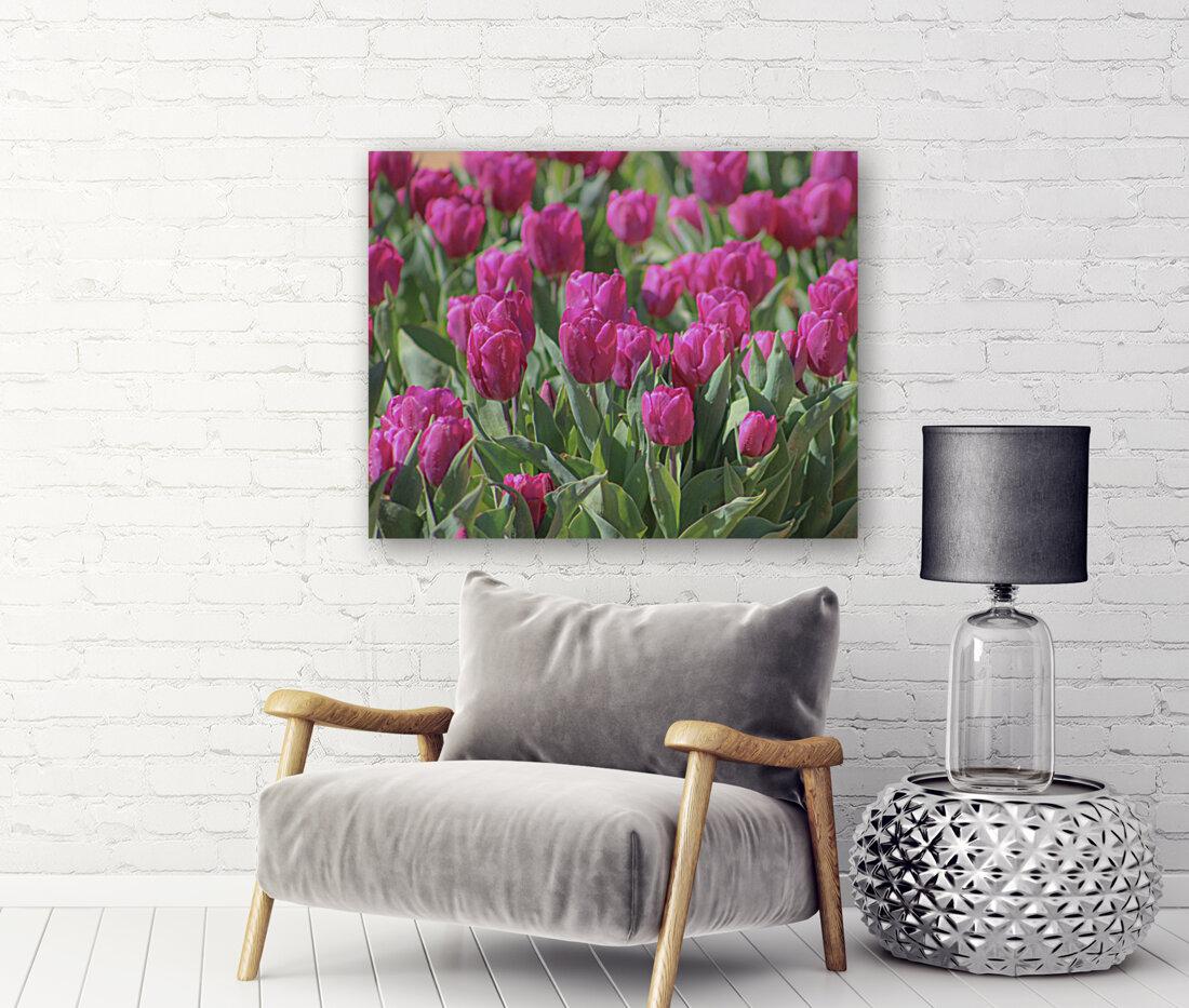 Fantasically Fuschia Tulips  Art