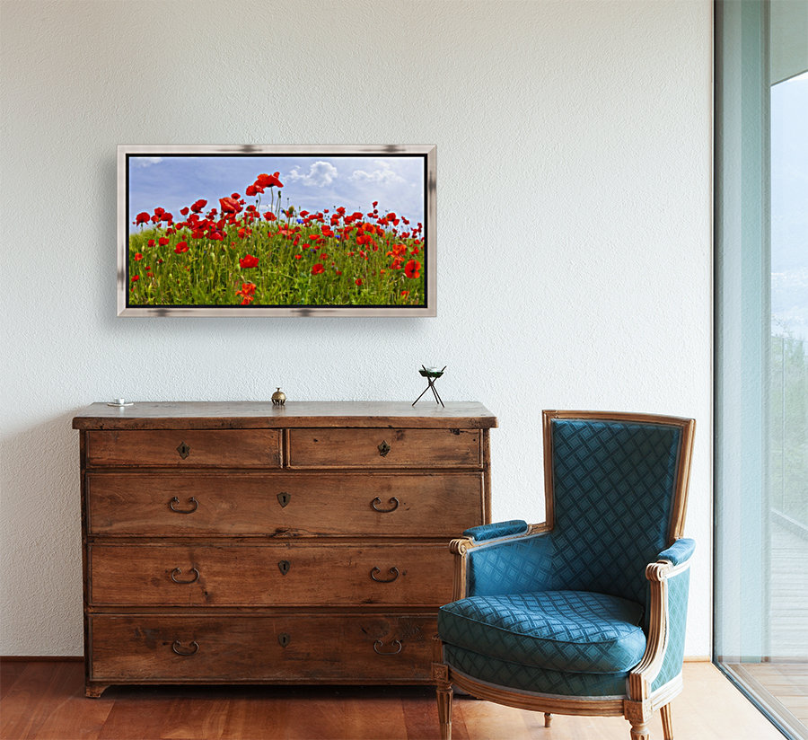 Field of Red Poppies  Art