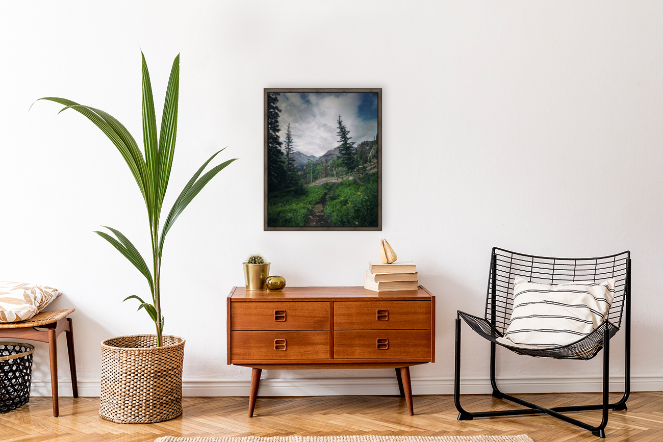 Rocky Mountain National Park  Art