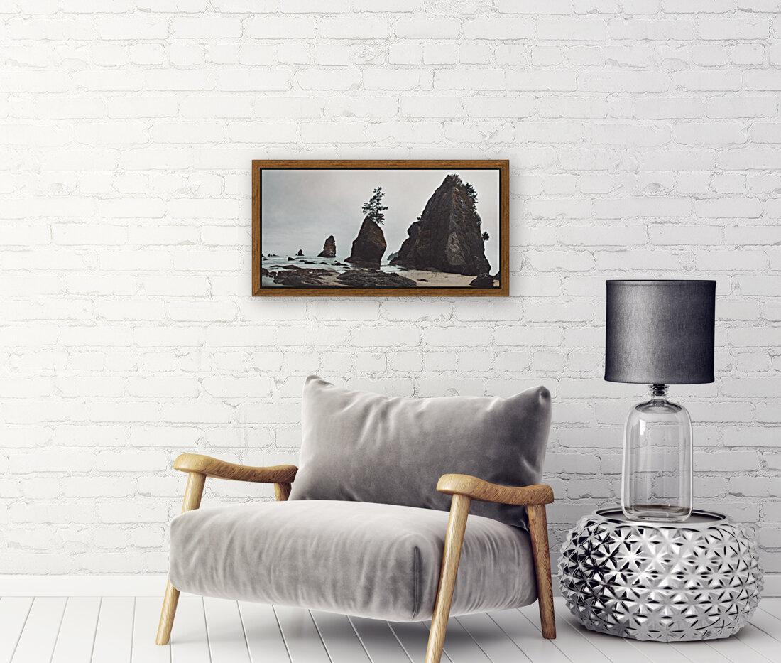 Shi Shi Beach  Art