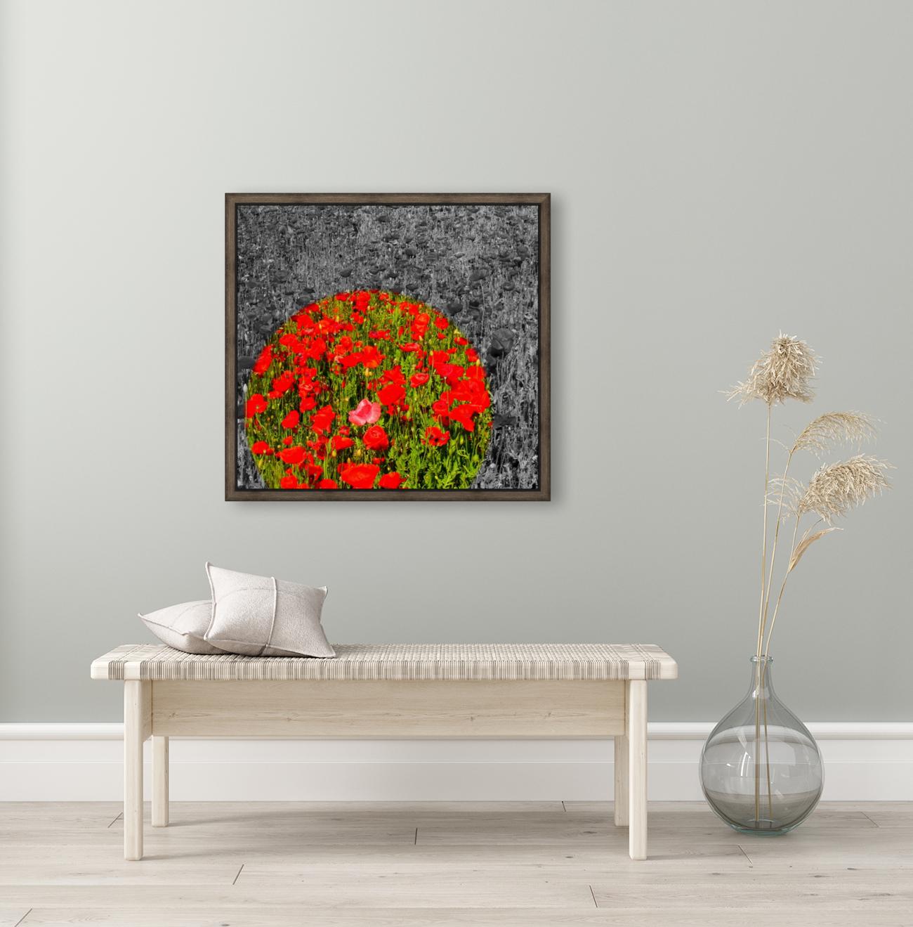 Poppy Popper Popping  Art