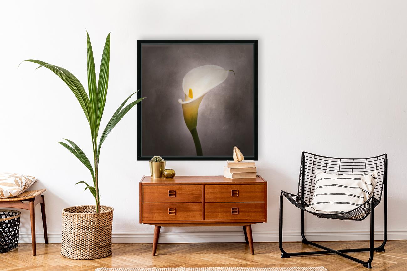 Graceful flower - Calla No. 4 | vintage style   Art