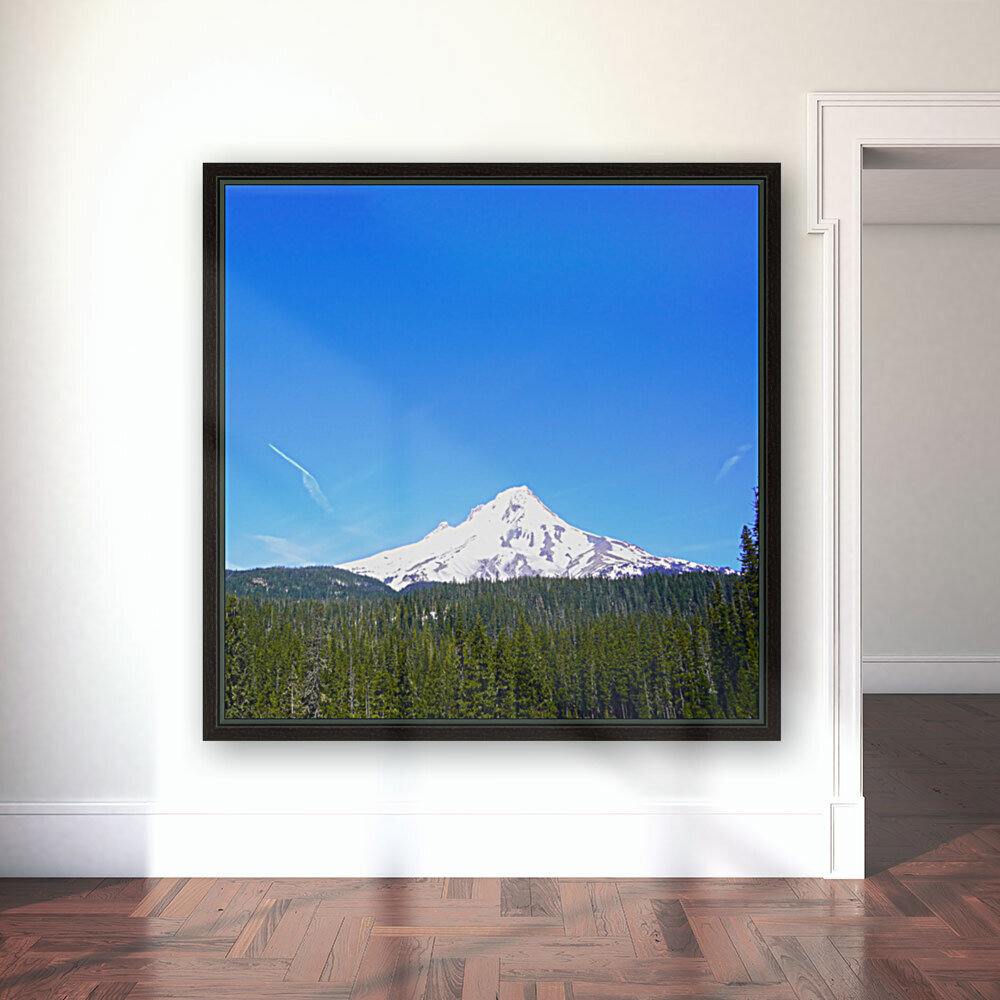 Mount Hood in Spring  Art