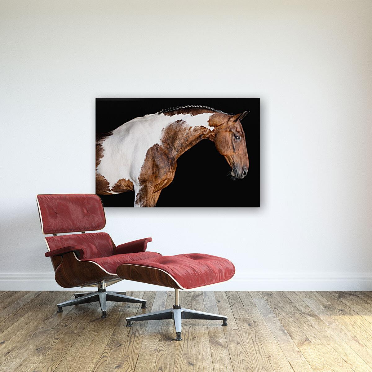 Paint Horse Portrait - Comanche  Art