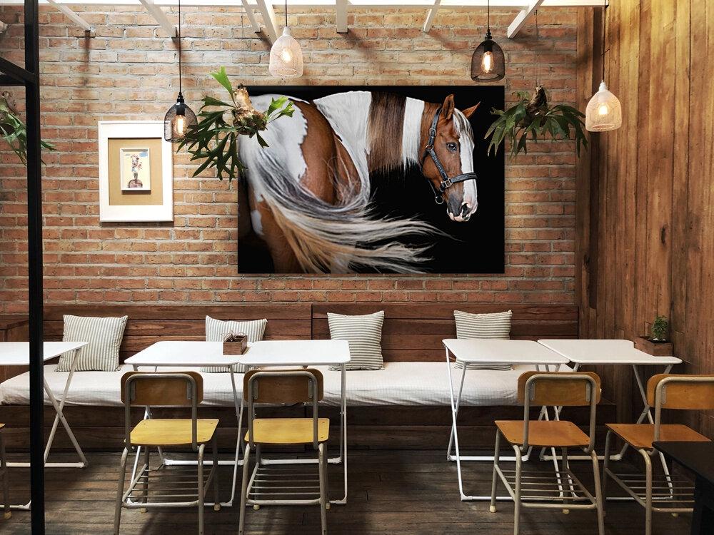 Paint Horse Portrait  Art