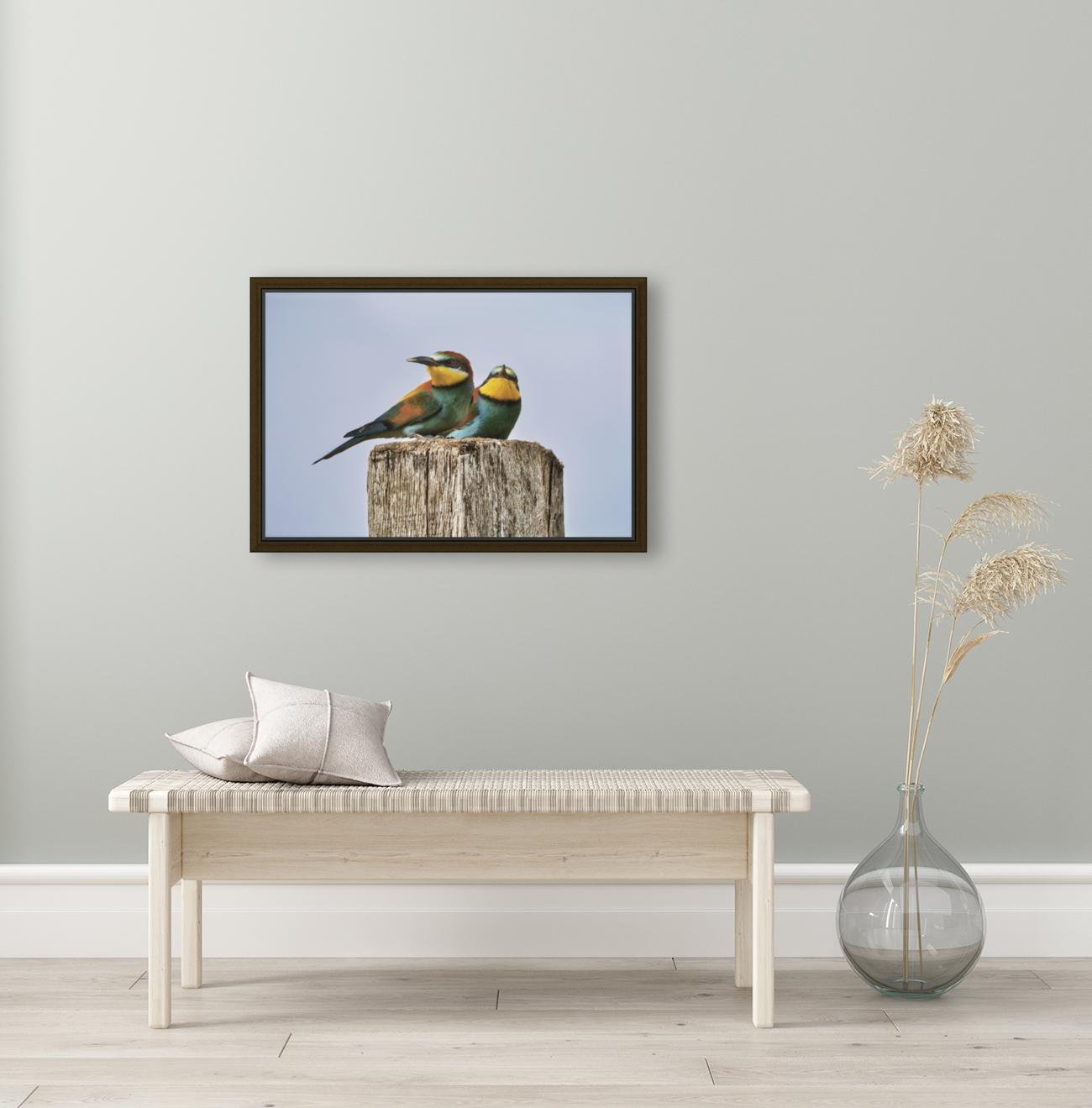 European Bee-Eaters  Art