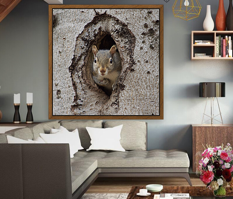 Squirrel in tree hole  Art