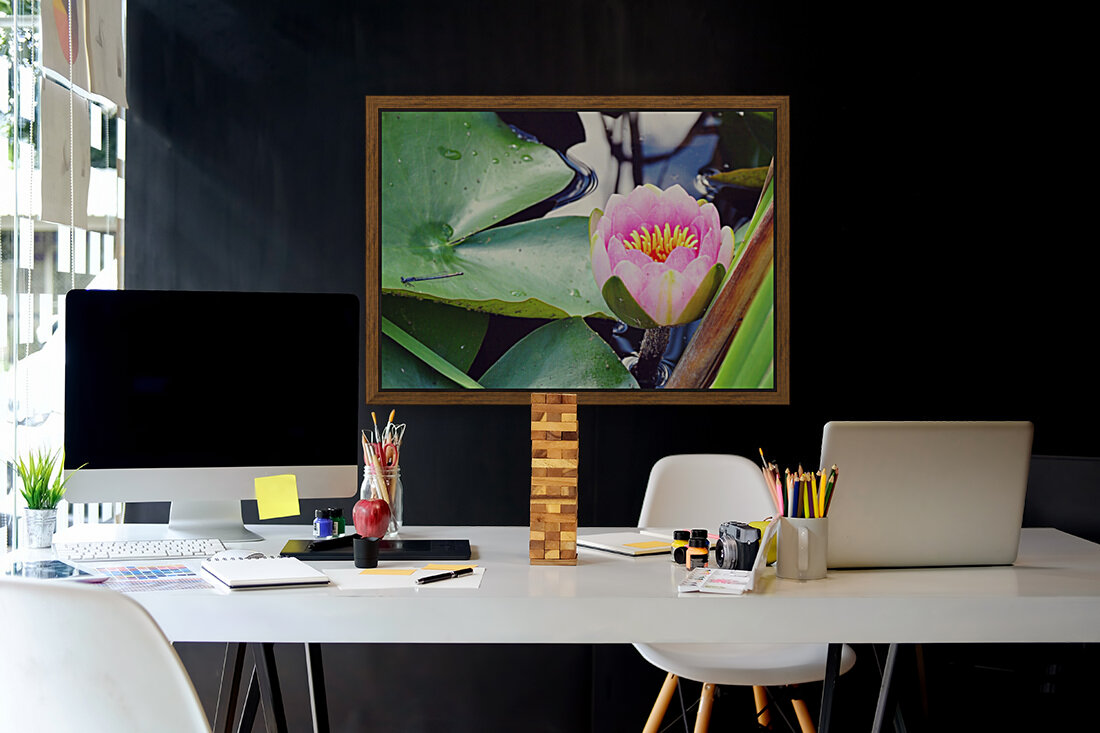 Dragonfly And Lily  Art