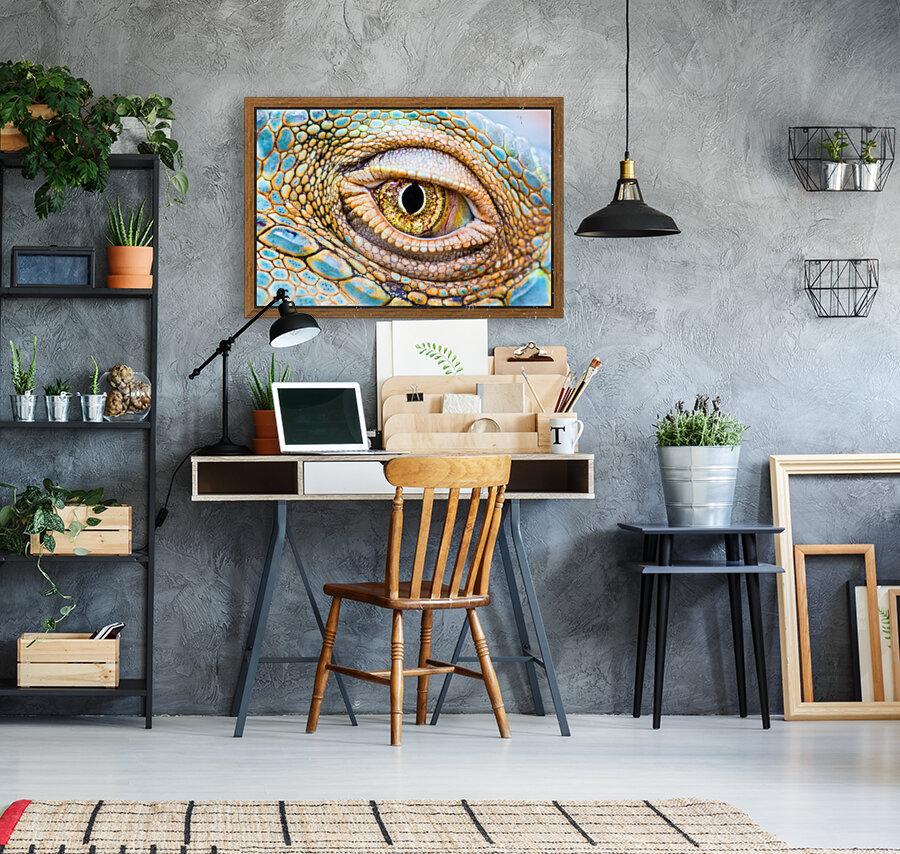 Eye of the dragon  Art