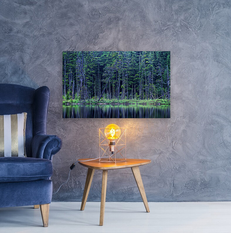Forest by the Lake  Art
