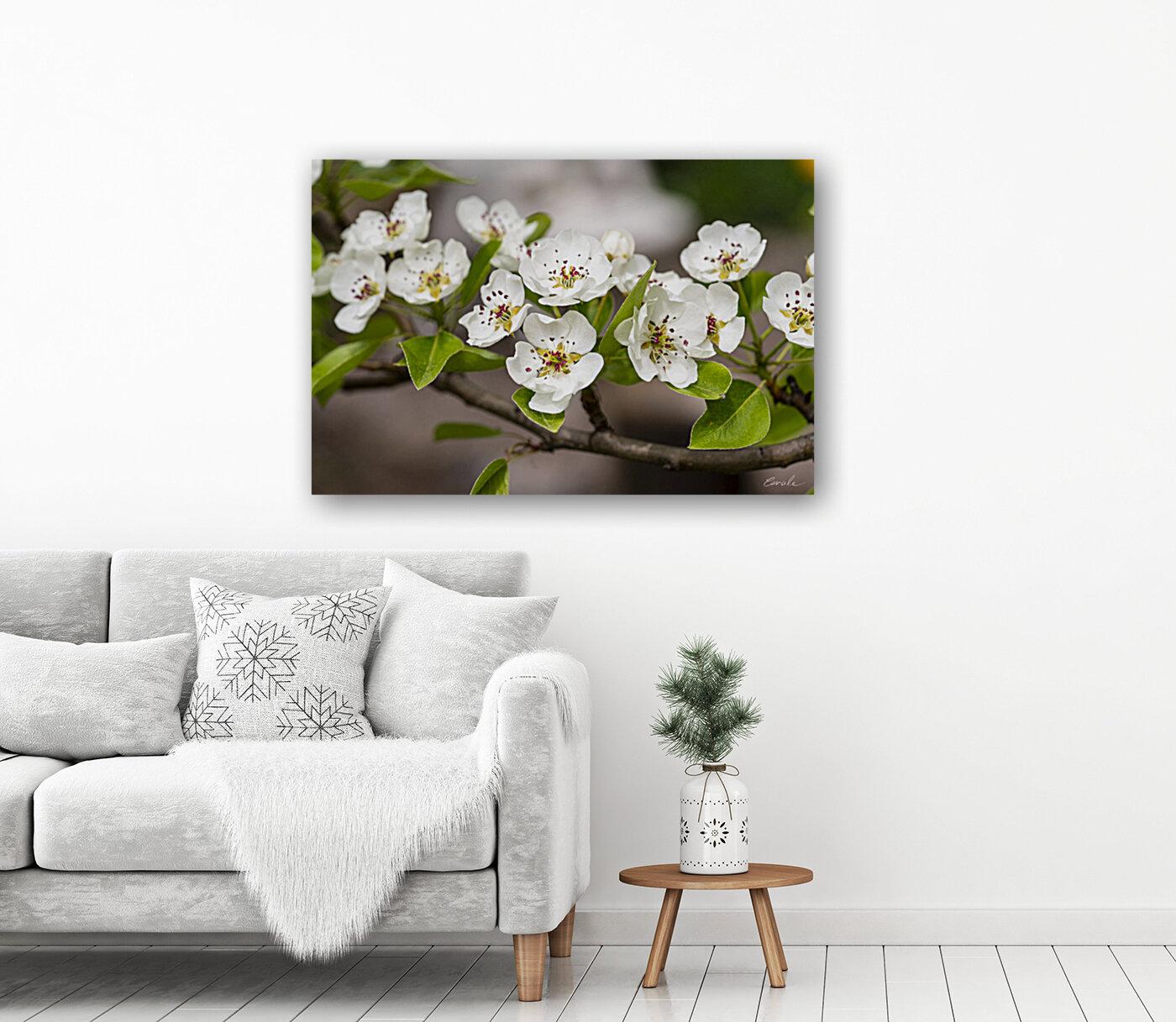 Poirier en fleurs 2  Art