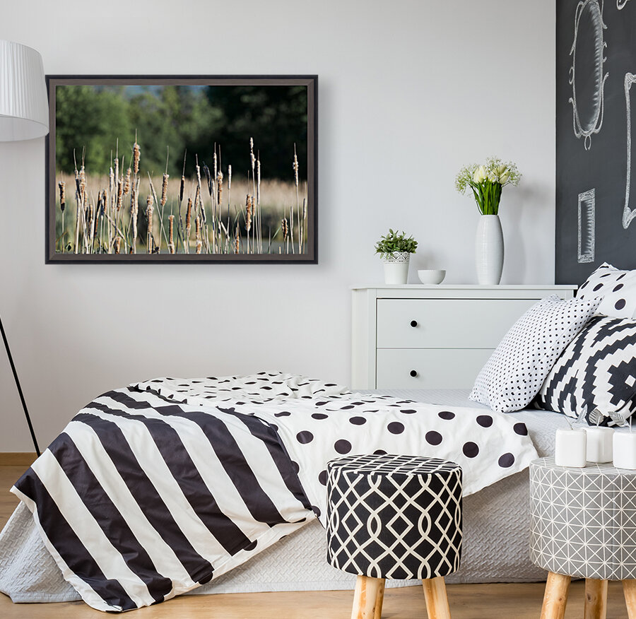 Cat Tails in Spring  Art