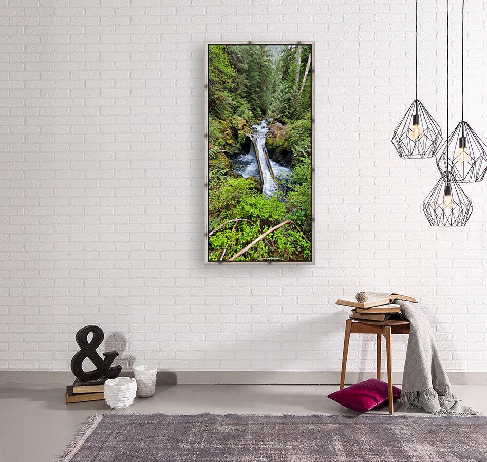 Natures Waterslide  Art
