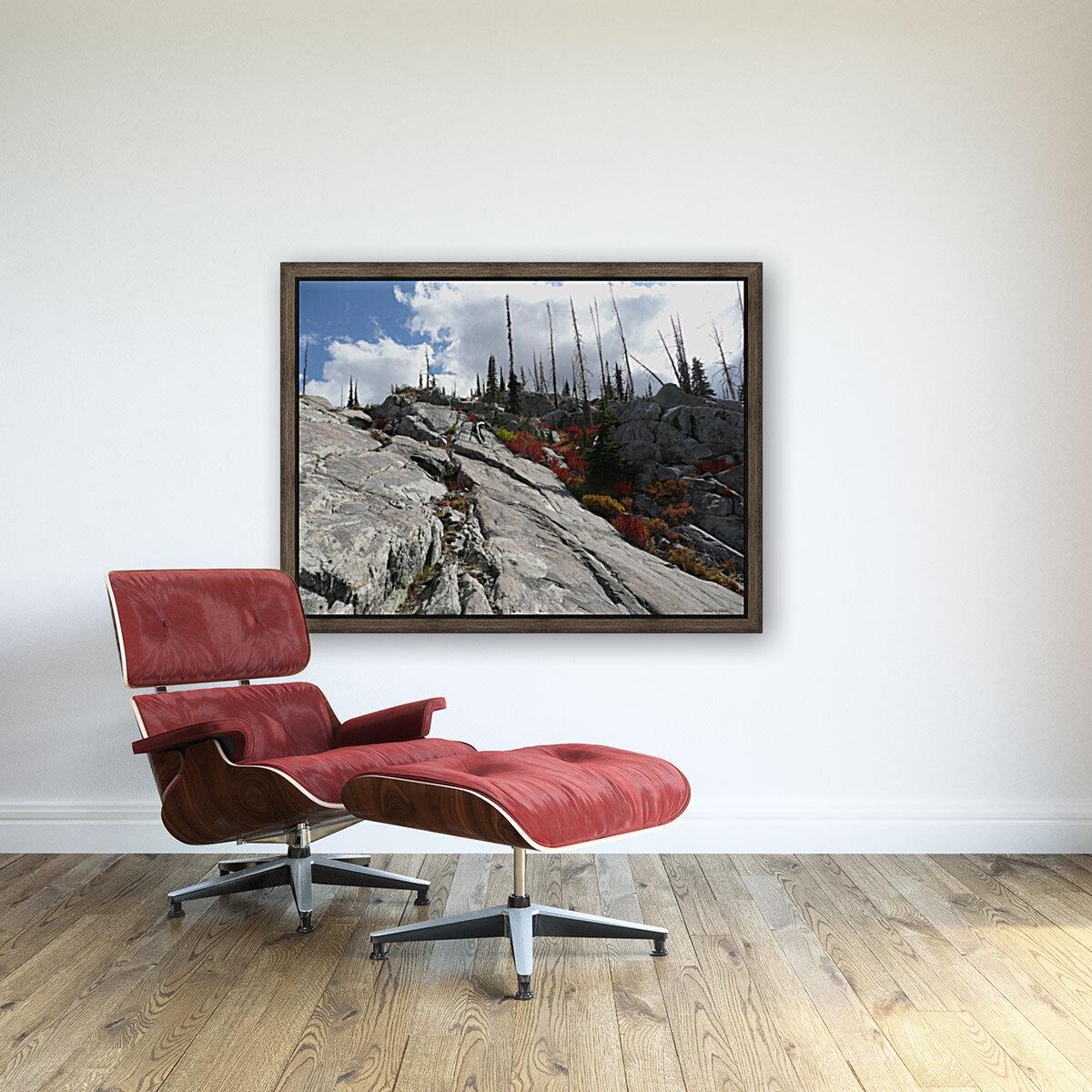 Easy Climb to Grouse Mountain  Art