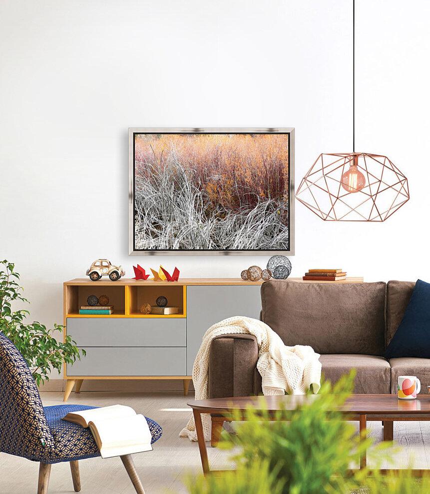 Willows  Art