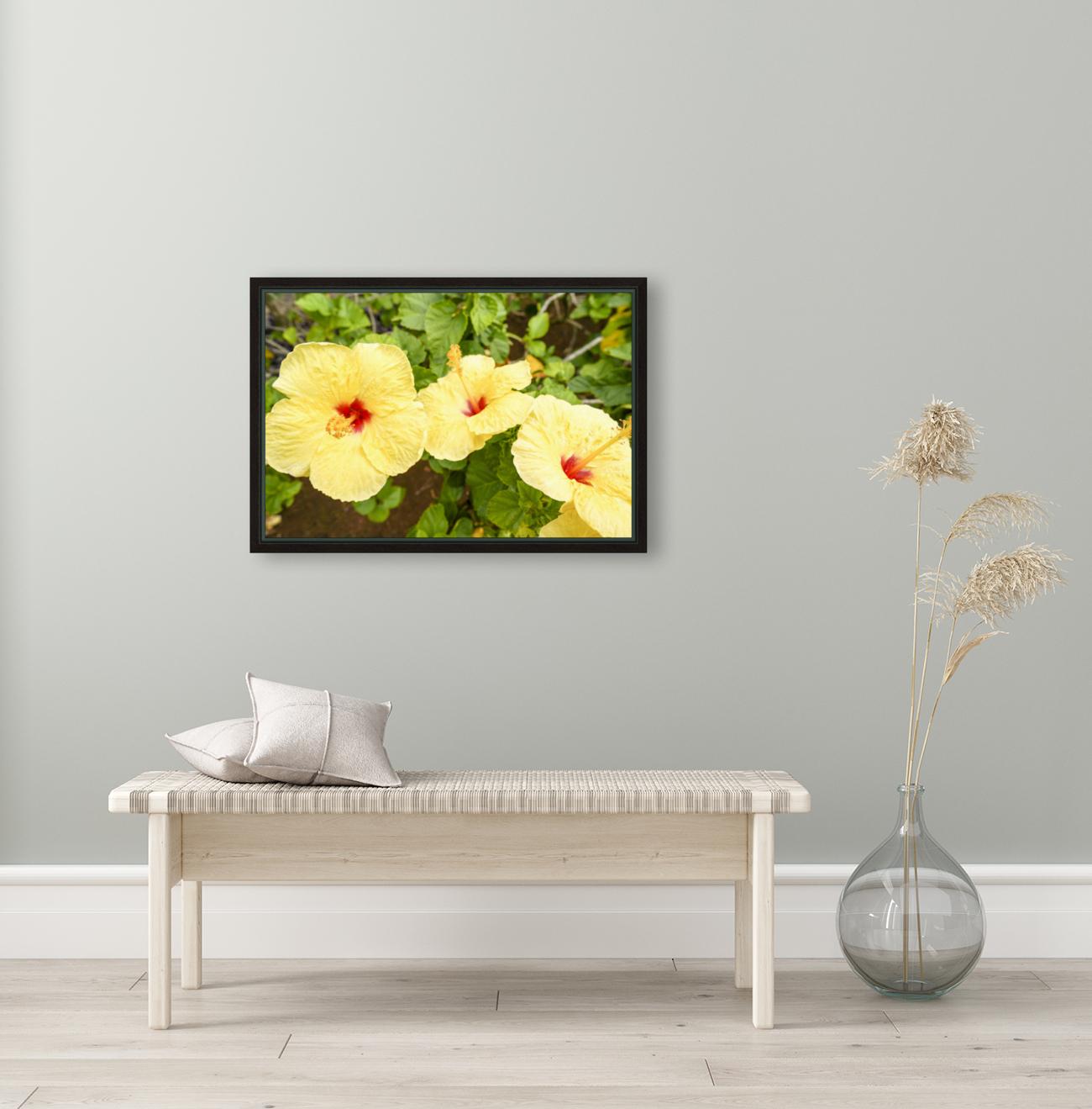 Hibiscus Trio   Tropical Flowers Hawaii  Art