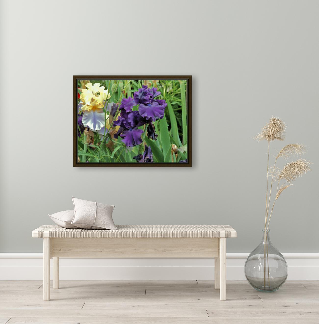 Two Iris  Art