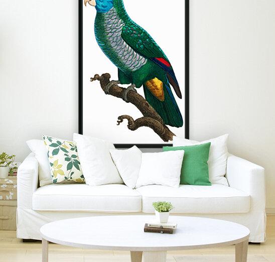 Yellow and Green Parrot Art Print Digital Download Vintage French Bird Illustration Printable Coastal Tropical Wall Art  Art