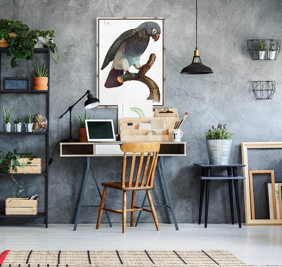 Macaw - Birds - Paradise - Tropical- Art Print - Wall Art - Parrot  Art