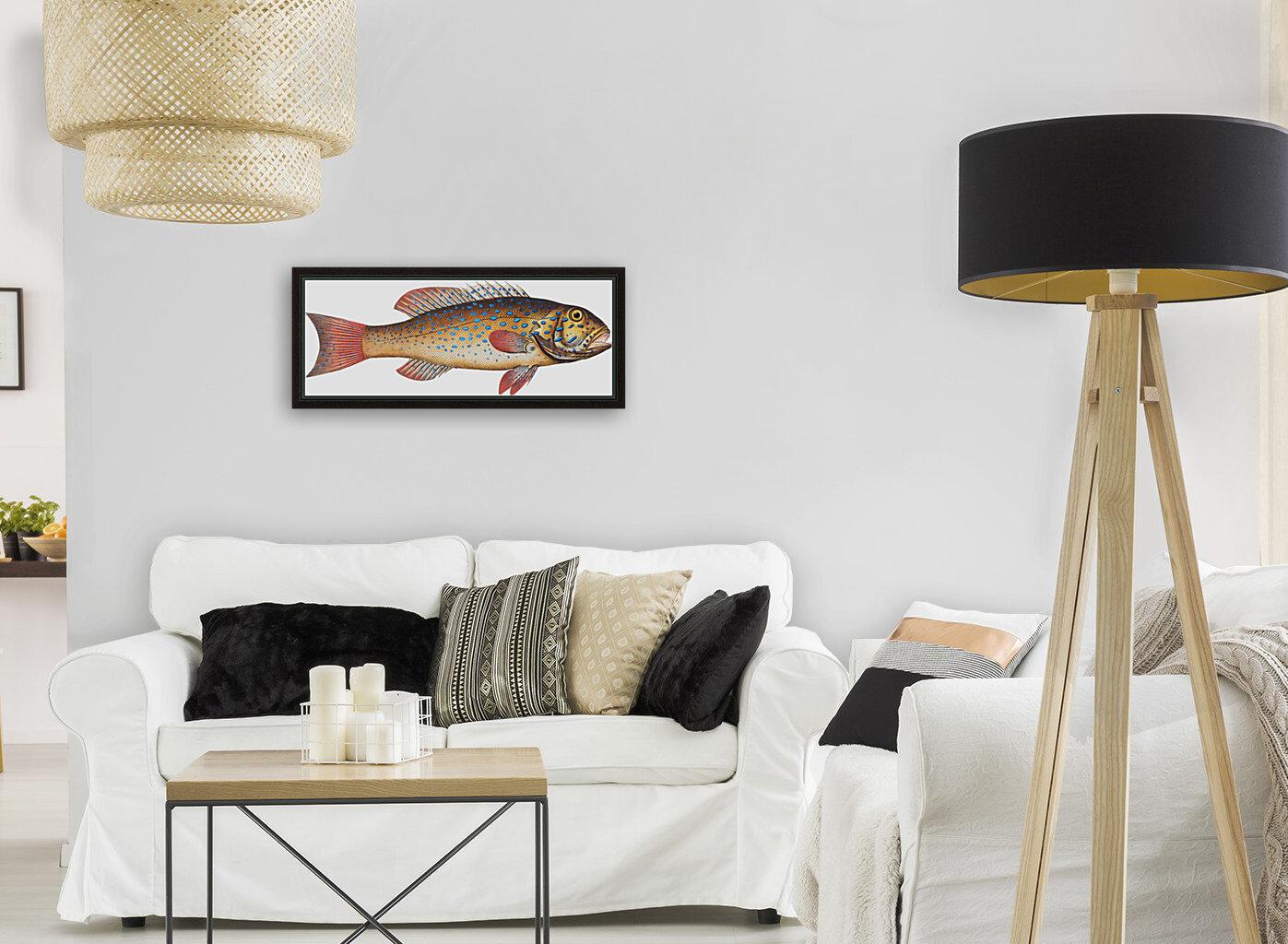 Vintage Fish Wall Art Prints   Art
