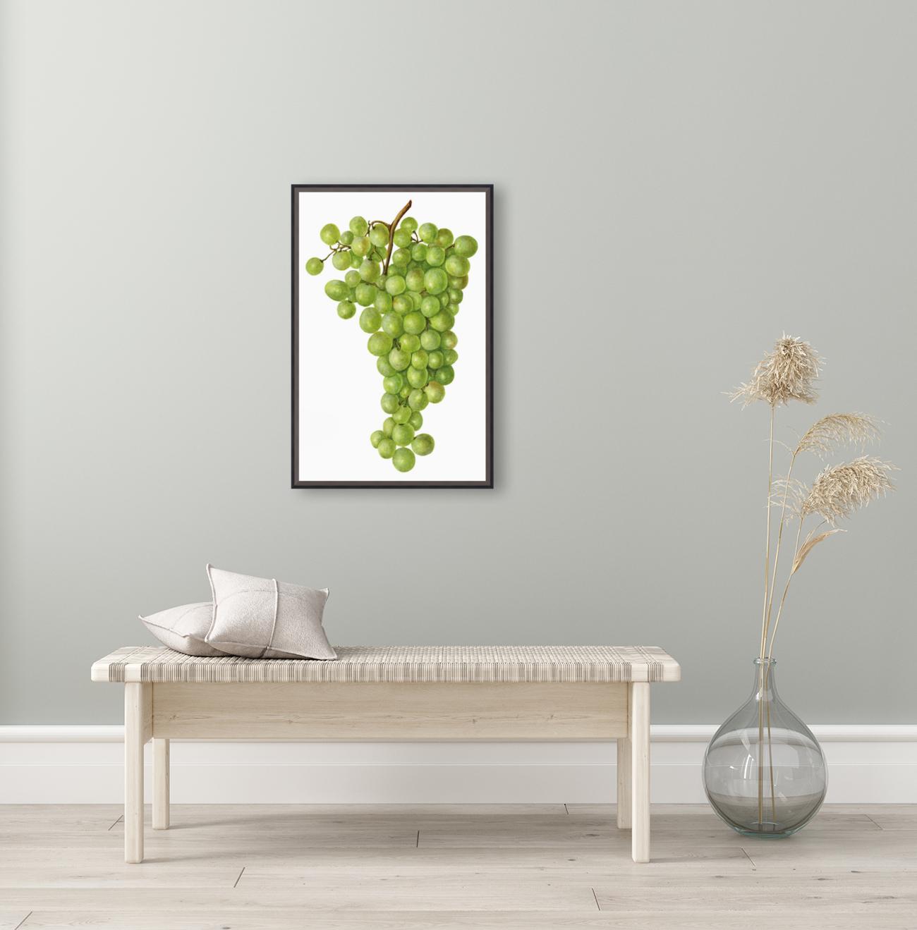 Green Grapes Wall Decor Vintage Botanical Poster Kitchen Art  Art