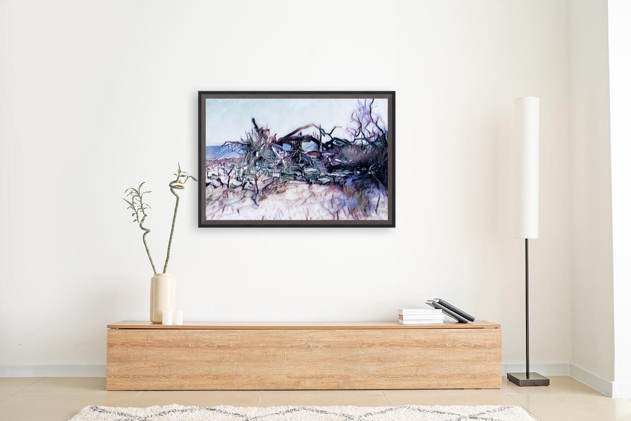 Driftwood Beach  Art