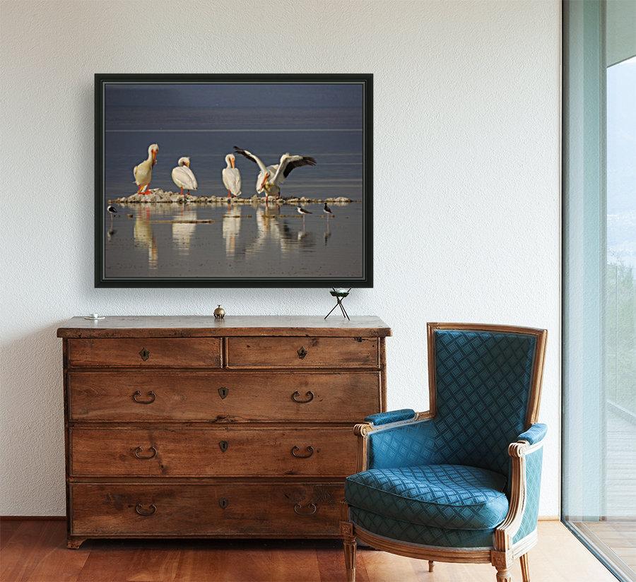 Pelican Reflections 2  Art
