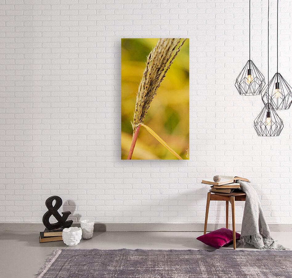 Flamboyantes Graminees no. 6 - Flamboyant Grasses no. 6  Art