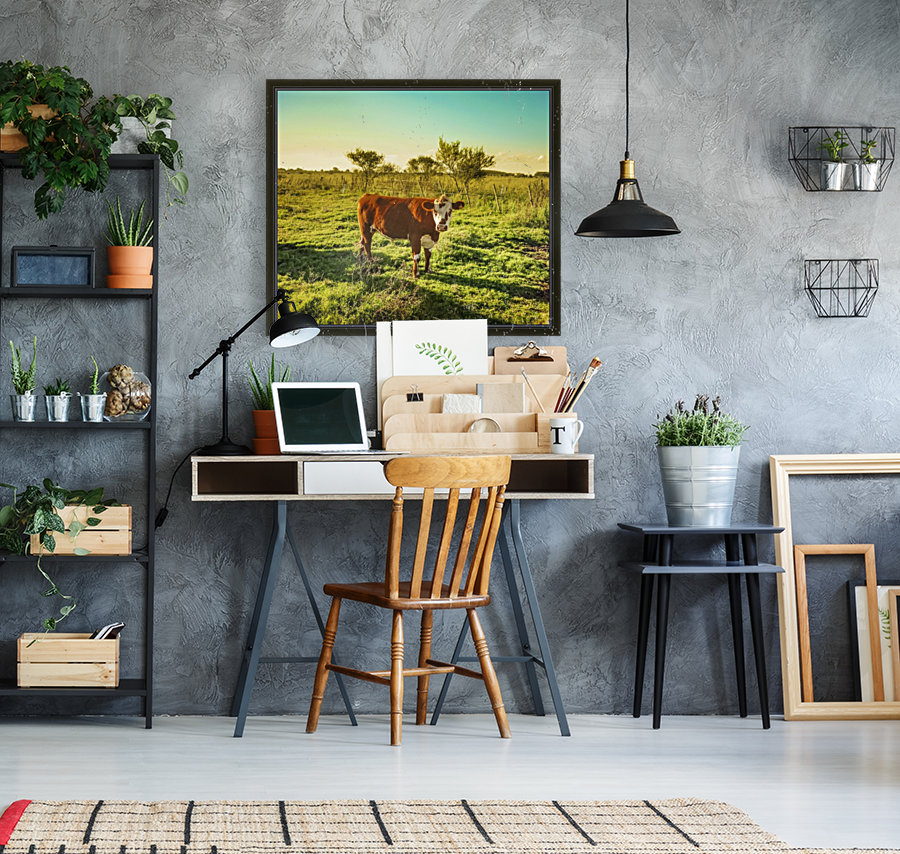 Cow in the Field Watching the Camera  Art