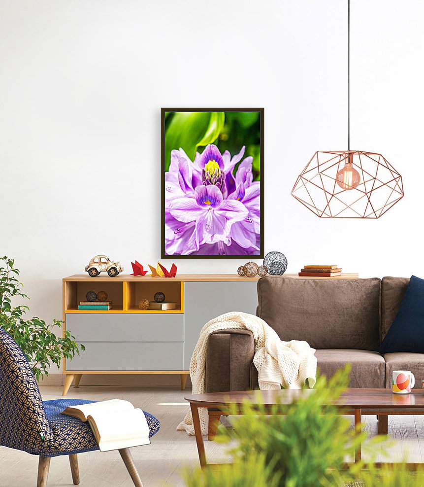 Water Lily with Floating Frame