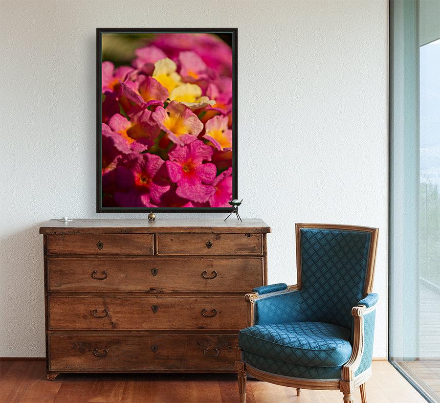 flowers 1  Art