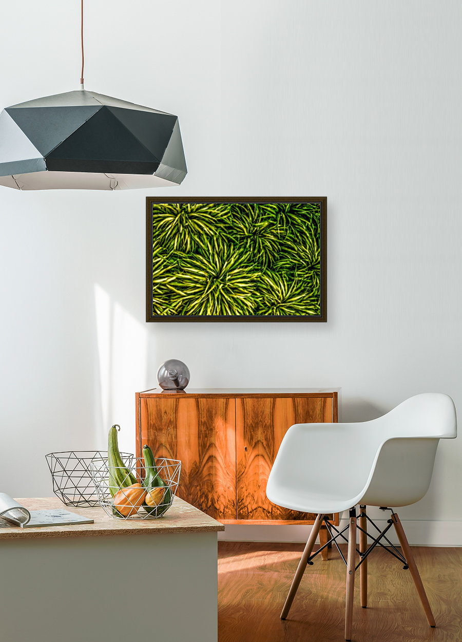 Green Chaos with Floating Frame