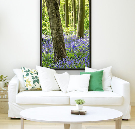 Bluebell Wood with Floating Frame