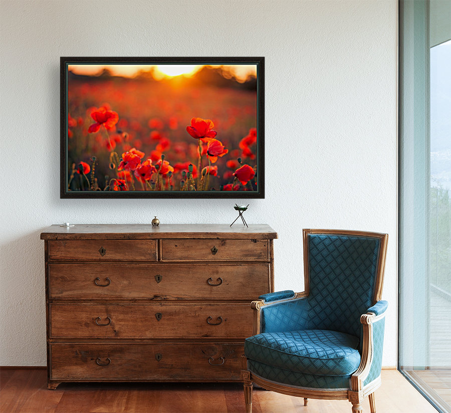 Beautiful Sunset poppy flowers with Floating Frame
