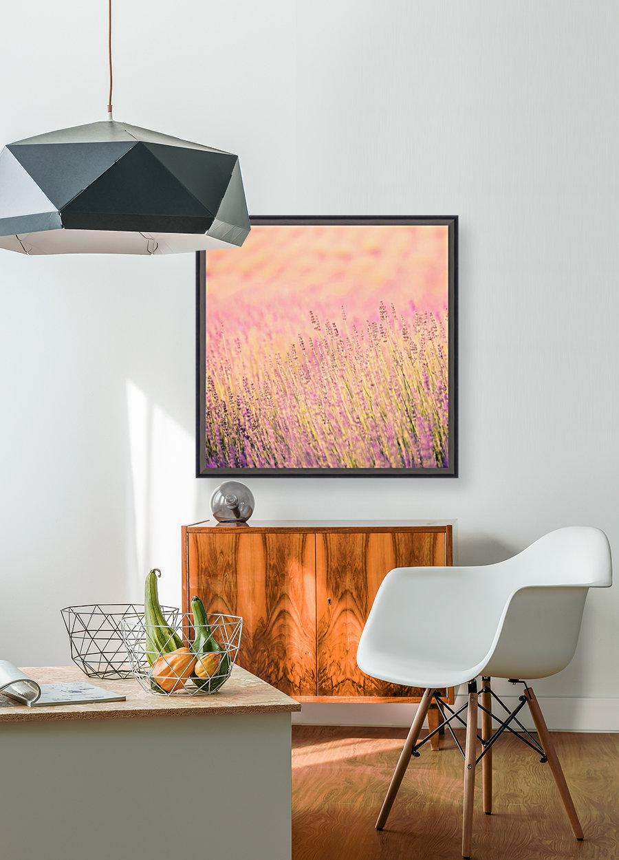Sunset lavender flowers, instagram effect  Art