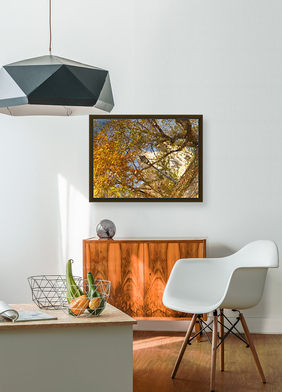 Autumn Reflections I  Art