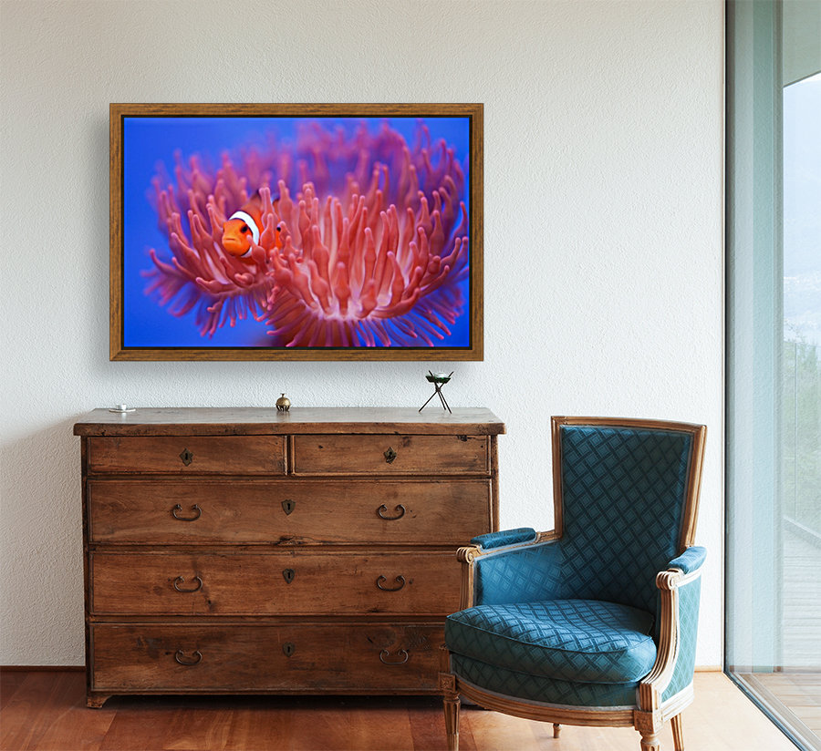 Finding Nemo  Art