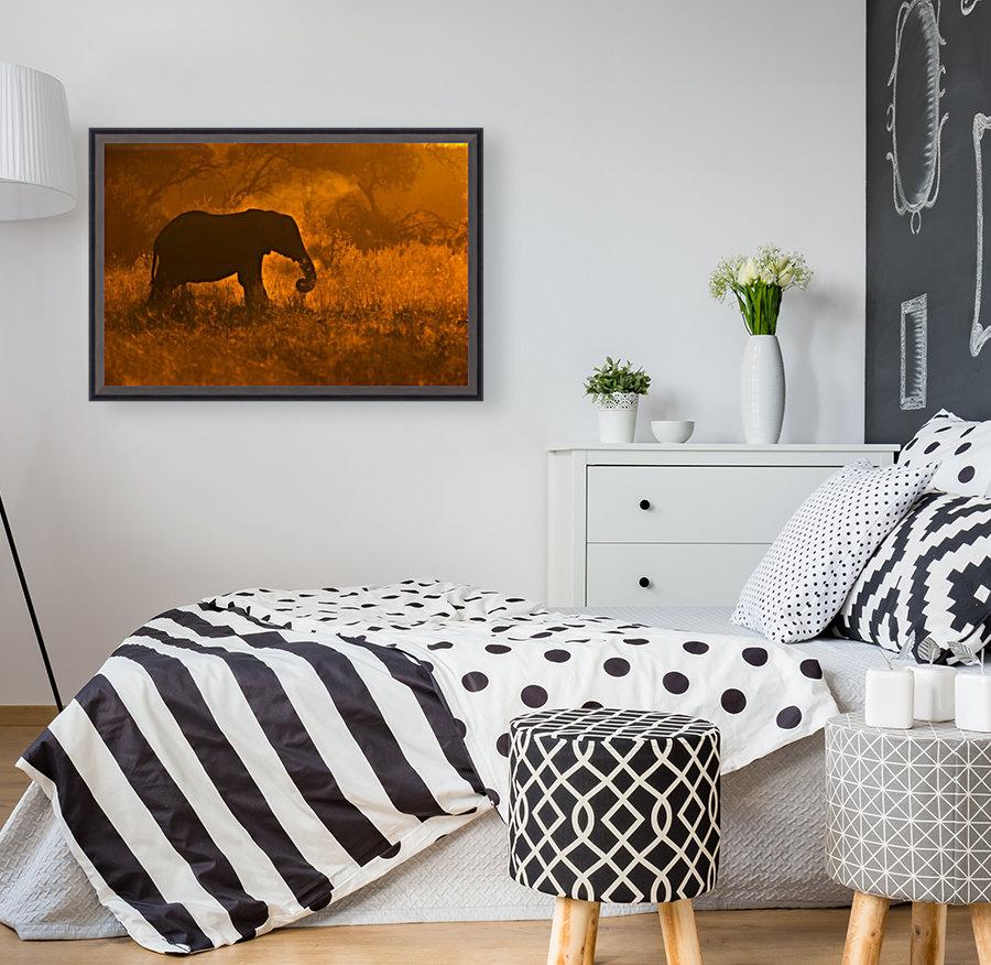 Golden Elephant in Savute  Art