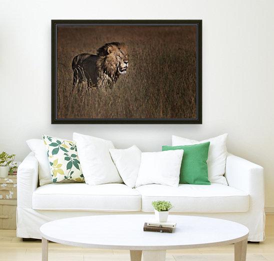 Lion King - 1x Canvas