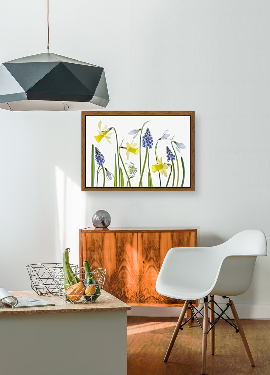 Spring with Floating Frame