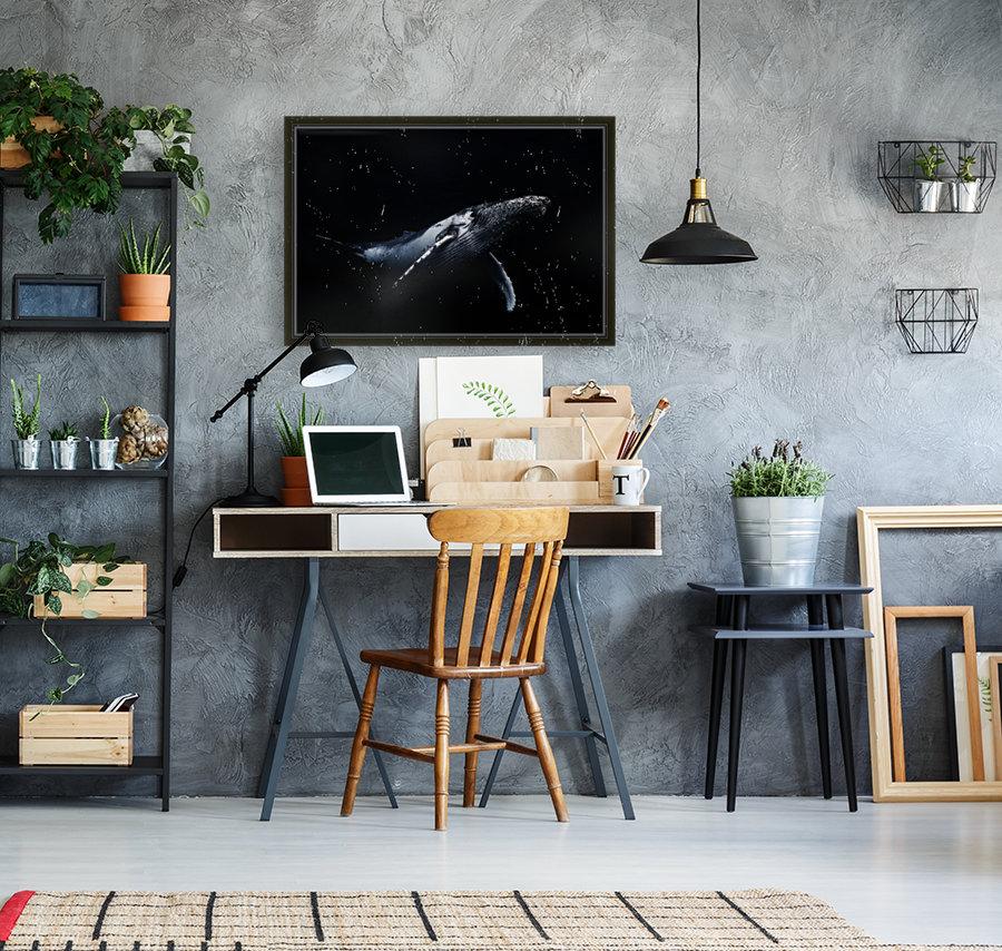 Black & Whale  Art