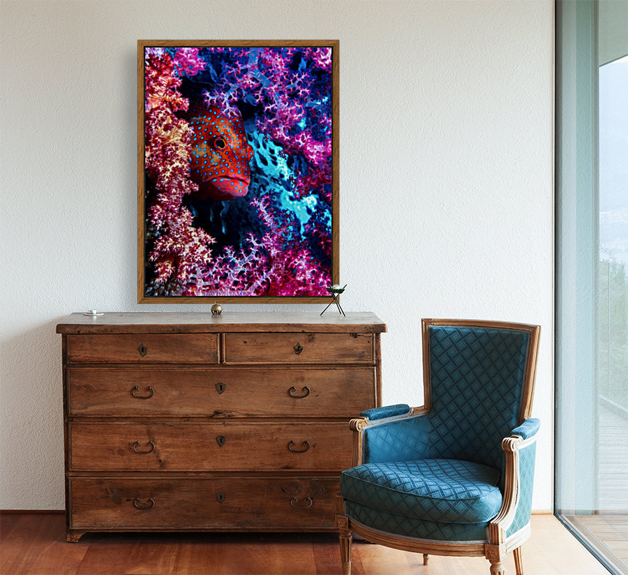 Coral Hind with Floating Frame