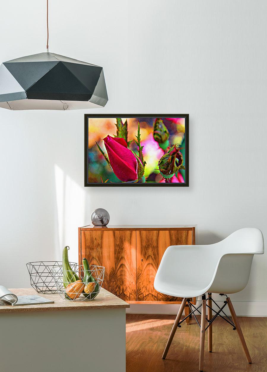Rosebud  Art