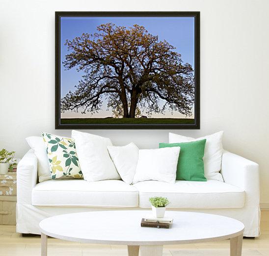 The Wishing Tree  Art