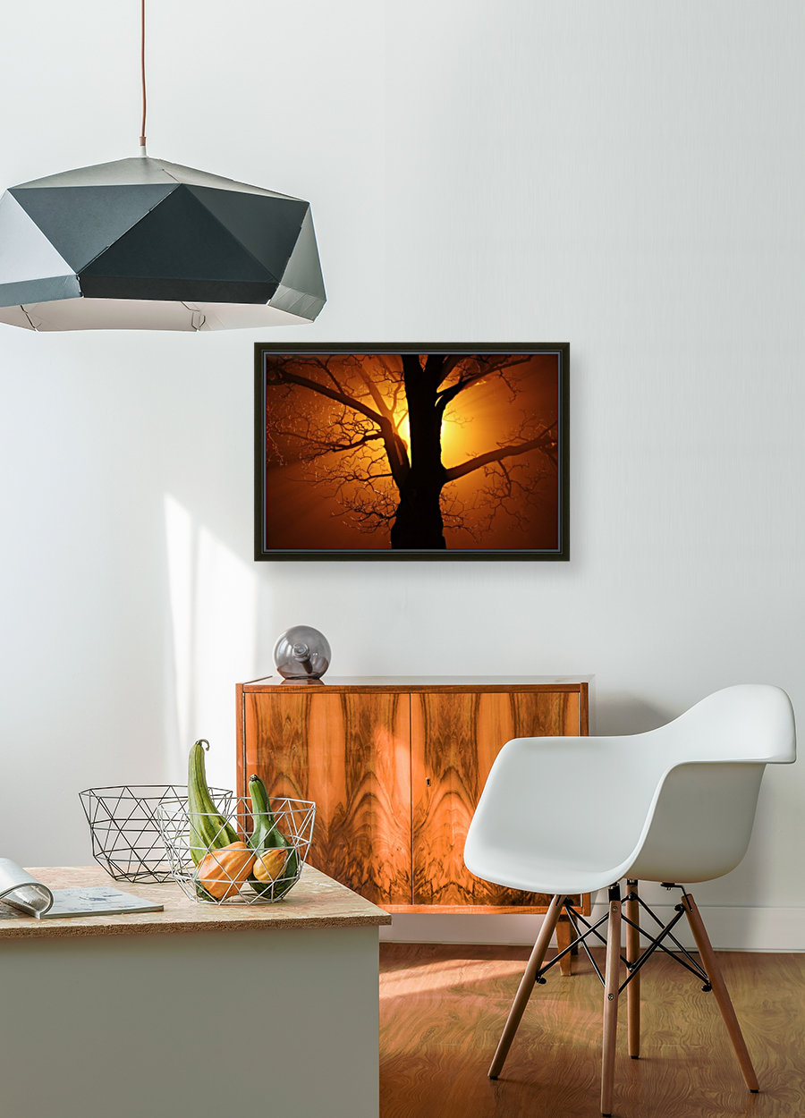 abstract sun tree with Floating Frame