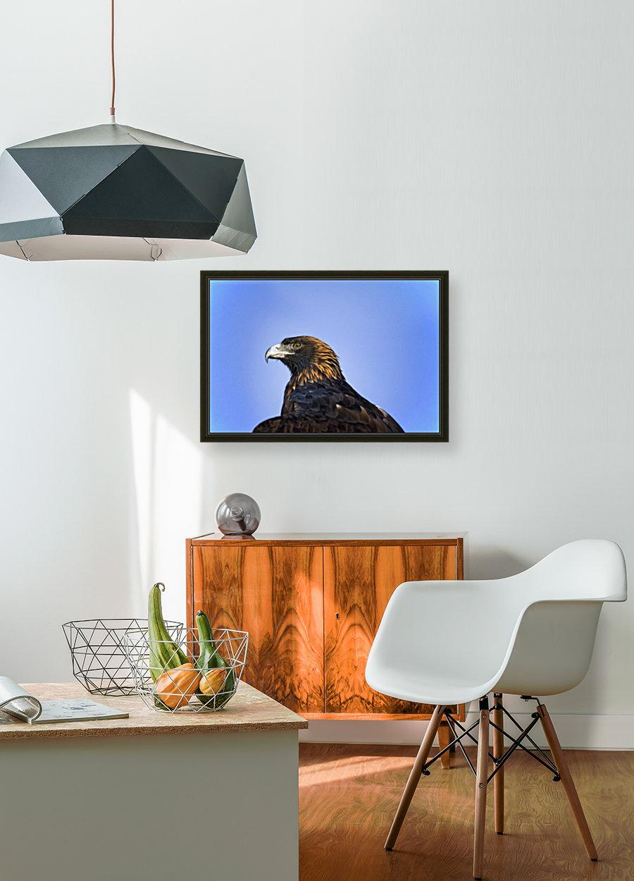 Golden Eagle  Art