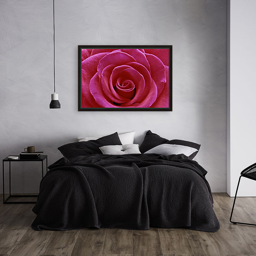 Rose Blossom with Floating Frame