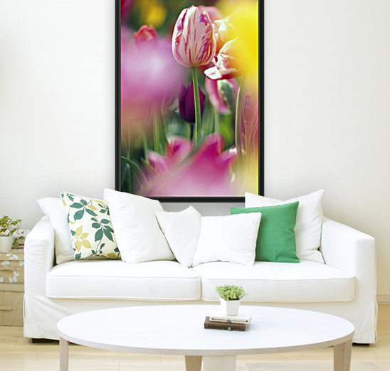 Tulip Flower  Art