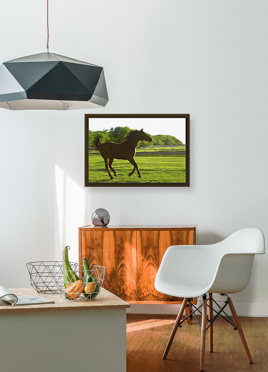 Horse Galloping  Art